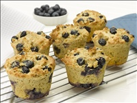 Atkins cuisine mini muffins lowcarb recepten for Atkins cuisine baking mix
